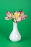 Bouquet of alstroemeria  in vase Stock Images