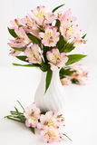 Alstroemeria. Bouquet alstroemeria in vase on the table Royalty Free Stock Image