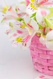 Bouquet of alstroemeria  in wicker basket Stock Photography