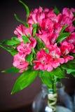 Bouquet of alstromeria Stock Photography