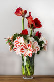 Bouquet with amaryllis Stock Photos