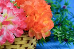 Bouquet of flowers in a basket Royalty Free Stock Photos