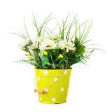 Bouquet from artificial flowers arrangement centerpiece in yellow metal bucket. Royalty Free Stock Photography