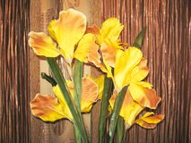 A bouquet of artificial flowers iris which lies on the windowsill royalty free stock photo