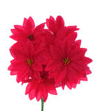 Bouquet of artificial red flowers Stock Photography