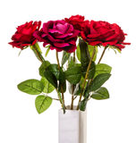 Bouquet  of artificial red roses in vase isolated. Artificial red rose isolated on white Royalty Free Stock Image