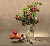 Bouquet of ashberry in glass vase and group of a r Royalty Free Stock Photography