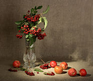 Bouquet of ashberry in glass vase and group of a r Royalty Free Stock Photos