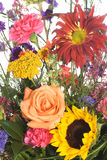 Bouquet of Assorted Flowers. Closeup view of a bouquet of an assortment of flowers, isolated against a white background Stock Photos