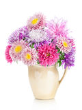 Bouquet of aster flowers in  pot isolated on white background Royalty Free Stock Image