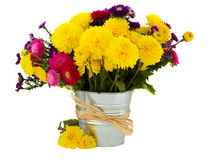 Bouquet of aster and mums in vase. Isolated on white background Royalty Free Stock Photo