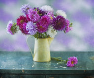 Bouquet of asters Stock Photos