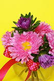 Bouquet of asters in a glass vase Royalty Free Stock Photo