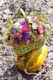 The bouquet of asters on a striped pumpkin. Royalty Free Stock Images