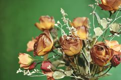 A bouquet of autumn brown colored artificial roses on green background royalty free stock photography