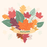 Bouquet of autumn colorful leaves tied with ribbon. Illustration in eps format Royalty Free Stock Photo