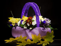 Bouquet of autumn flowers in a basket of lilac color. Royalty Free Stock Photo