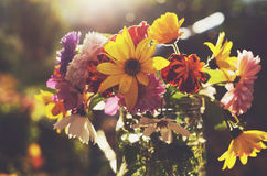 Bouquet of autumn flowers in sunlights Royalty Free Stock Image