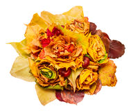 Bouquet of autumn leaves Royalty Free Stock Image