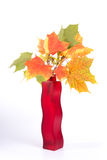 Bouquet of autumn leaves in bright colored vase Stock Images