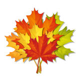Bouquet of autumn leaves stock illustration