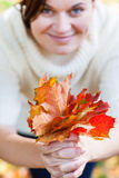 Bouquet of autumn leaves in woman hand Stock Photos