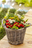 Bouquet of autumn plants in wicker basket Royalty Free Stock Photography
