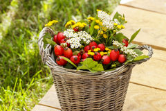Bouquet of autumn plants in wicker basket Royalty Free Stock Photos