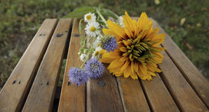 Bouquet with autumn wildflowers Stock Photography