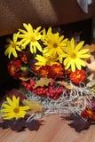 Bouquet& x28 ; autumn& x29 ; Images libres de droits