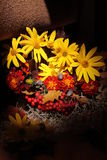 Bouquet& x28 ; autumn& x29 ; Images stock
