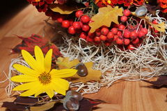 Bouquet& x28 ; autumn& x29 ; Photographie stock libre de droits