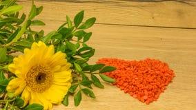Bouquet avec les fleurs jaunes Photo stock