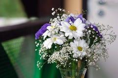 Bouquet avec les fleurs sensibles Photo libre de droits
