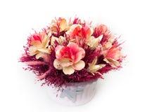 Bouquet of azaleas in a pot. Сгеу Bouquet of azaleas in a pot Royalty Free Stock Photos