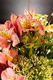 Bouquet of a beautiful alstroemeria flowers Stock Photos