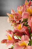 Bouquet of a beautiful alstroemeria flowers on wood Stock Image