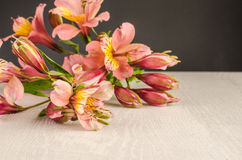 Bouquet of a beautiful alstroemeria flowers on wood Stock Images
