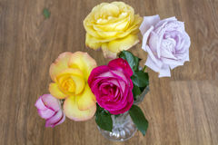 Bouquet of beautiful blooming roses in a glass vase Stock Image