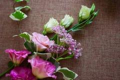 Bouquet beautiful Eustoma flower Lisianthus, tulip gentian, eus Stock Images