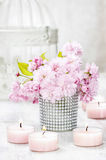 Bouquet of beautiful flowering almond (prunus triloba) Royalty Free Stock Images
