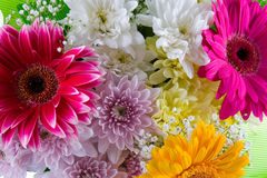 Bouquet of beautiful flowers Royalty Free Stock Photography