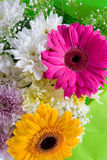 Bouquet of beautiful flowers Stock Photography