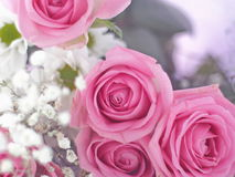 Bouquet of beautiful flowers as a background. Selective focus on pink roses Stock Photography