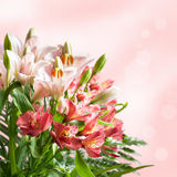 Bouquet of beautiful flowers with bokeh Stock Photo