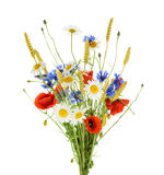 Bouquet of beautiful flowers Cornflowers, chamomiles wheat and Royalty Free Stock Image
