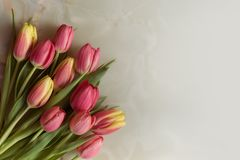 Greeting card with tulips. Bouquet of beautiful flowers, spring tulips on a marble background stock photography