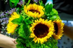 bouquet of beautiful flowers with sunflower on Floristry concept. Spring colors. stock image