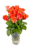 Bouquet of beautiful fresh red roses Stock Images