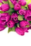 Bouquet of beautiful fresh tulips Stock Photos